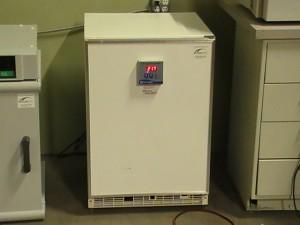 Fisher Scientific Model 146E Low Temp Incubator